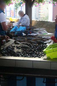 Grandcamp Maisy - La halle aux poissons